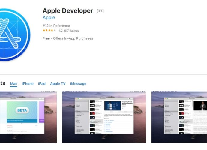 apple developer app on app store 1592312248